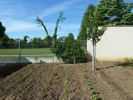 17-jardin et muroise (2)
