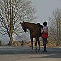 La Balade du Jambon - Balade à cheval dans le mortainais (66)