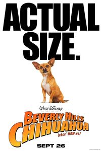 2008_beverly_hills_chihuahua_attitude_poster_001