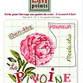 sal lili point pivoine étape 2 (2)