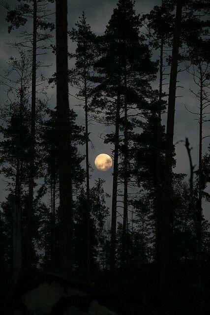 Une simple bénédiction de Pleine Lune