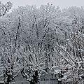 Chute de neige et
