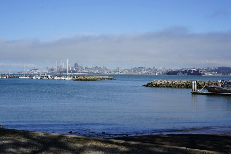 san francisco bay 18