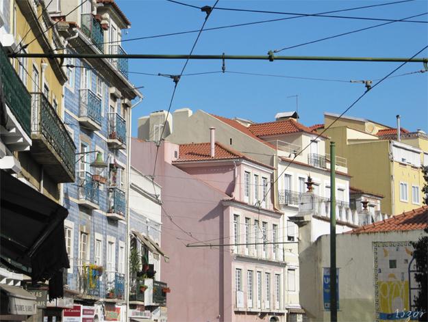 13zor_portugal_2