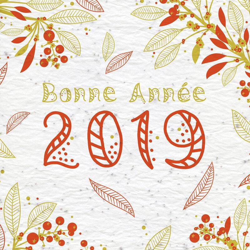 bonne-année-2019-2