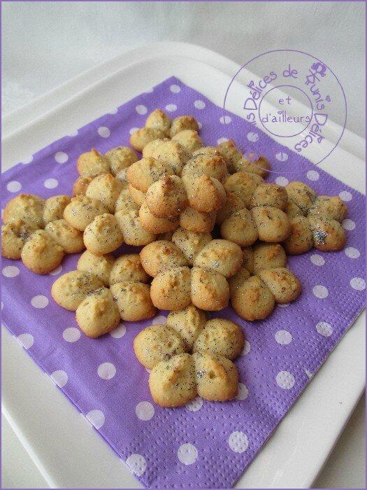 biscuits presse à la vanille 2
