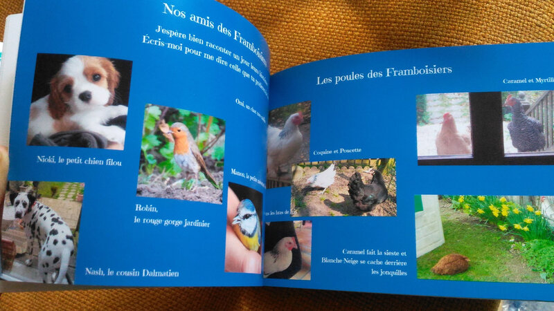 pages NOS AMIS DES FRAMBOISIERS