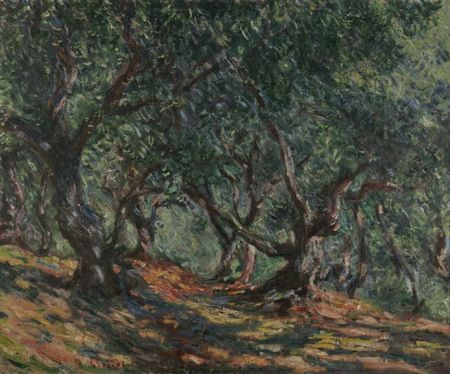 Monet Les oliviers à Bordighera 1884