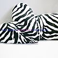 zebraelle cushion deco b