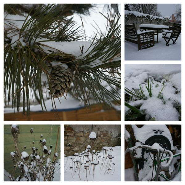 Neige collage