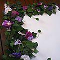 PLAN DE TABLE mariage papillon (6)