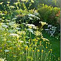 Windows-Live-Writer/Jardin_10232/DSCN0756_thumb