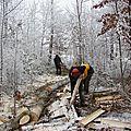 DSC01333 à Romont, cloué au sol : vent et neige...