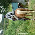 Jeux équestres manchots - parcours de pleine nature après-midi (227)