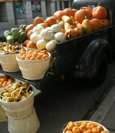pumpkin_truck2