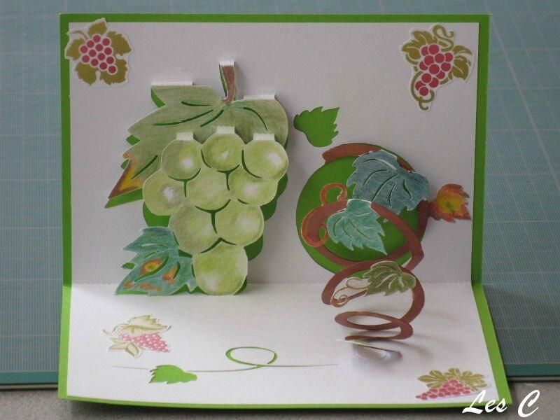 grappe raisin (800x600)