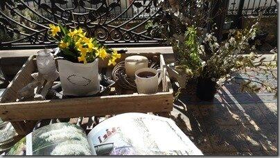 Windows-Live-Writer/Joli-printemps-au-jardin-_601C/20170312_114547_thumb_2