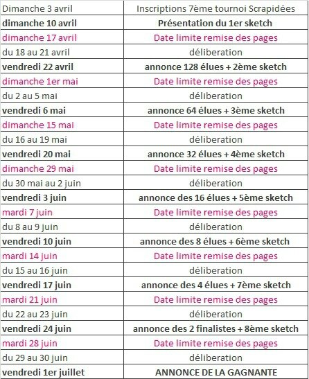 Planning_tournoi_Scrapidées_2016jpg