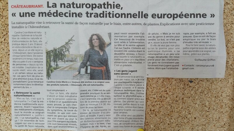 article castelbriantais
