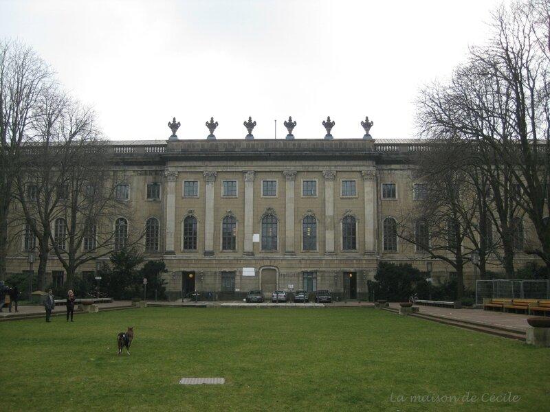 Humboldt Universität jardin