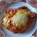 Gratin d'aubergines au saucisson de naples et mozzarella