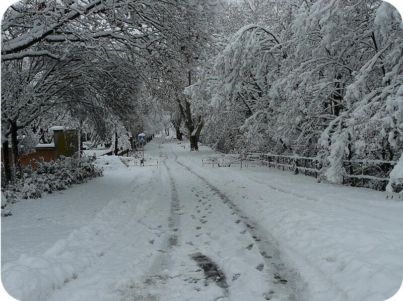 Quartier Drouot - Photo neige 4