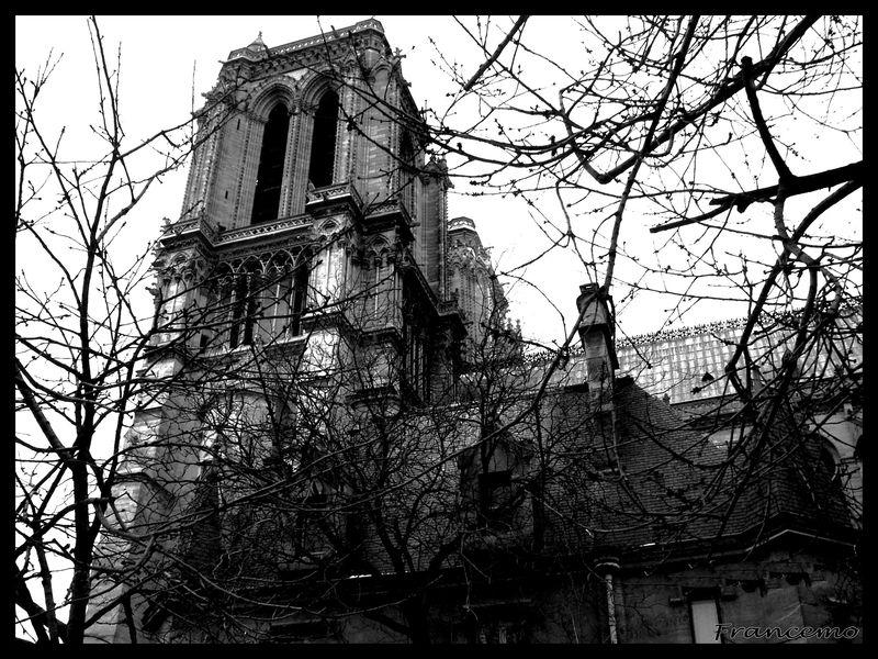 14-Notre Dame NB