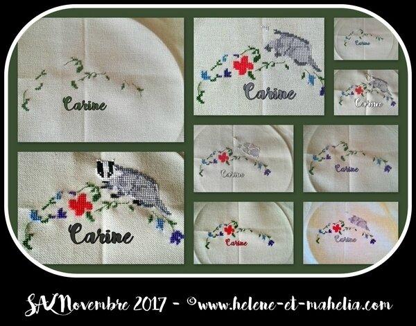 carine_salnov17_col3