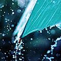 Sous le parapluie de karin68, 35 inscrite