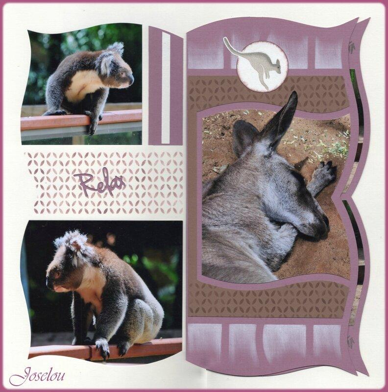 Koala Park 1