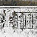 Gouttes et Balade au Lac 101218