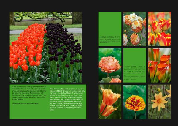 GardenColours1_Page_06