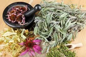 Plantes naturelles pour guérire des maladies