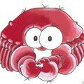 crabe rouge carte