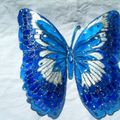 2010_090404-09-10-papillons0003