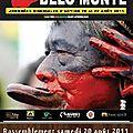Brésil : la construction du barrage de belo monte a été suspendue, le combat continue !