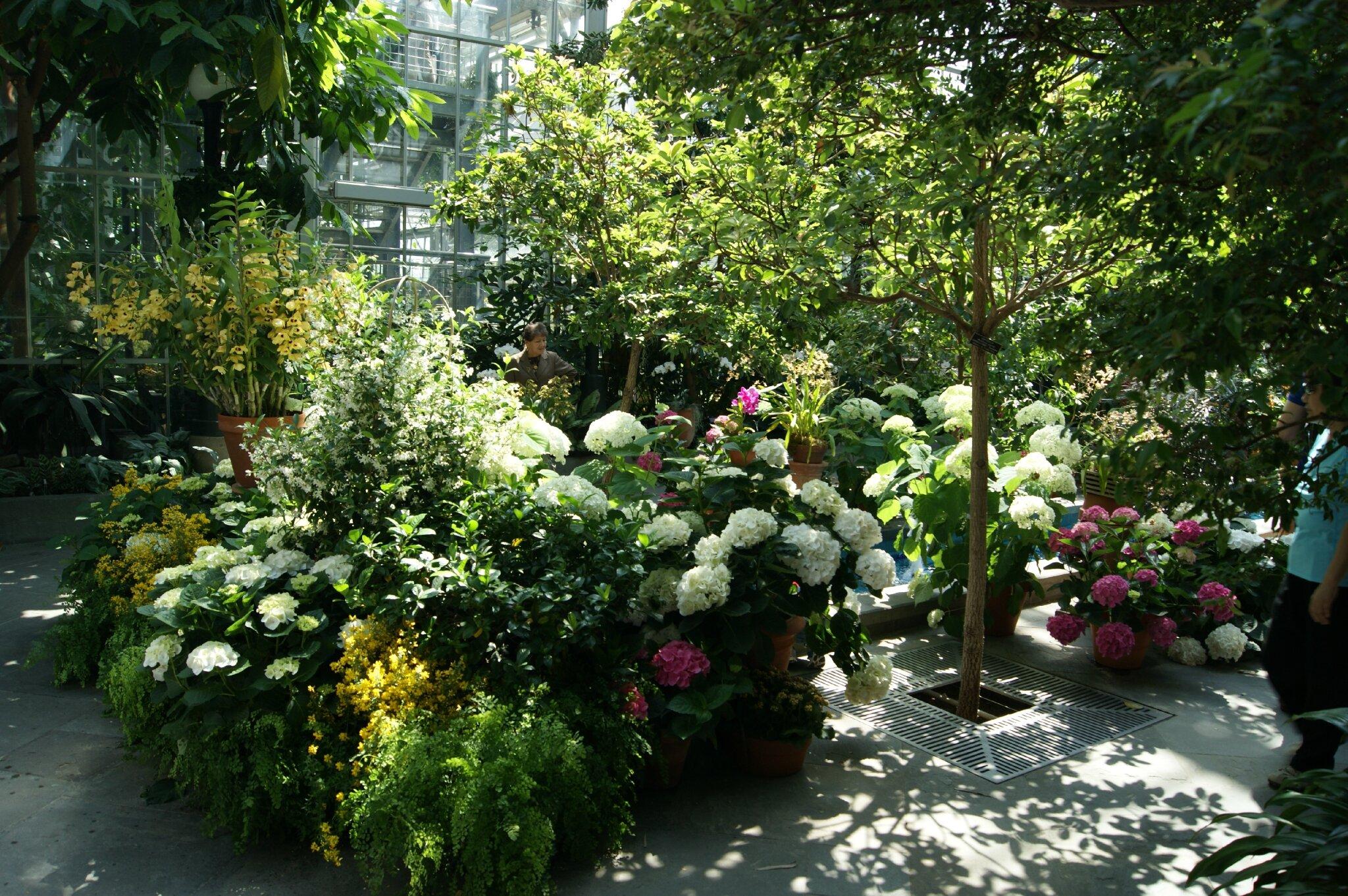 Jardin Botanique - musée (4)