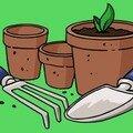 Première expérience de jardinage