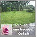 j-aime-pas-la-pluie-02
