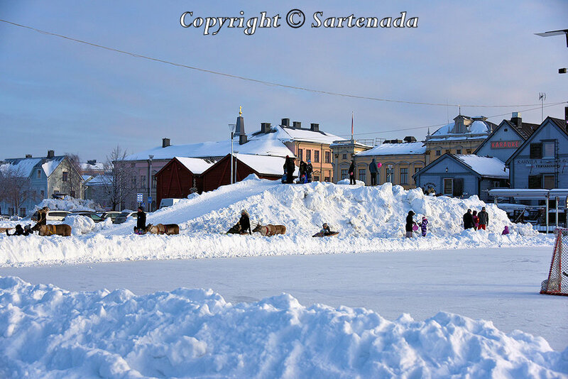 reindeer_rides_for_families_oulu_-17