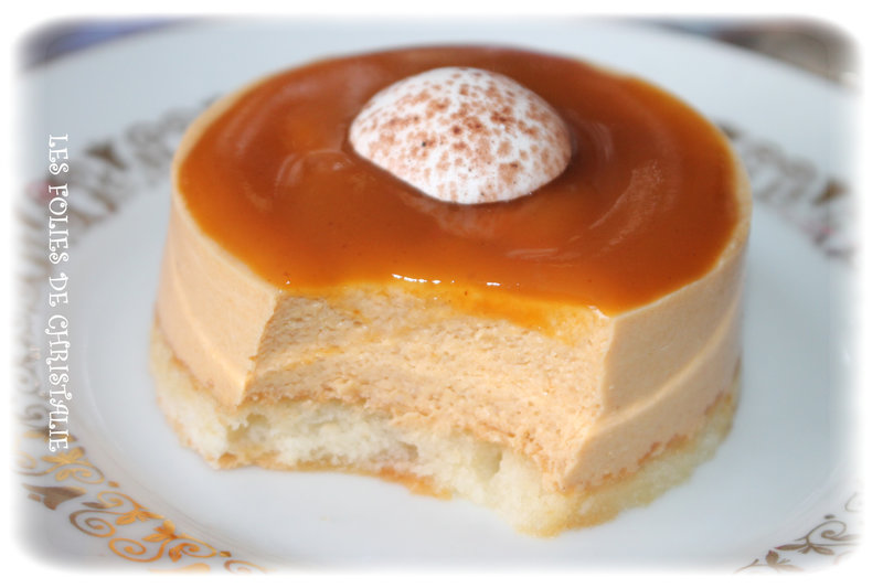 Petit bavarois abricots 7