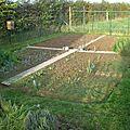 Jardin nettoyé