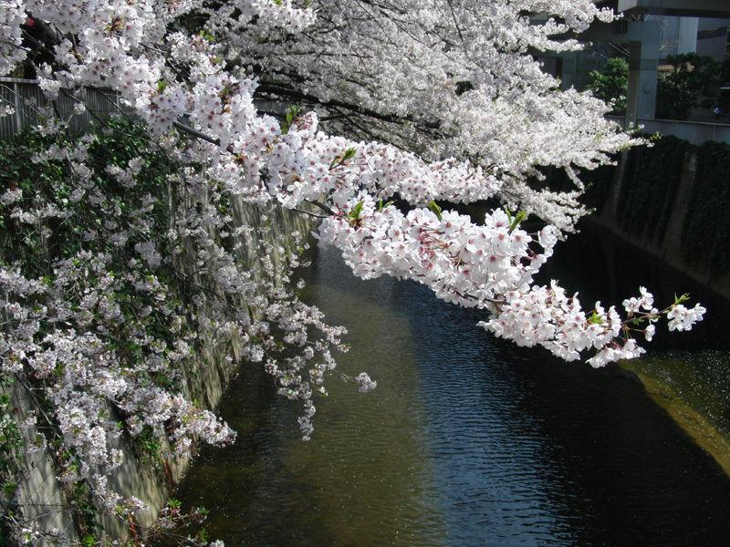 Edogawabashi_3-4