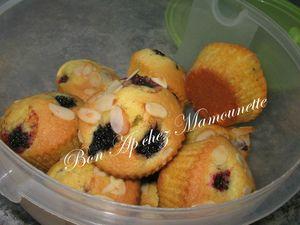 Petits gâteaux à la mûre sauvage 016