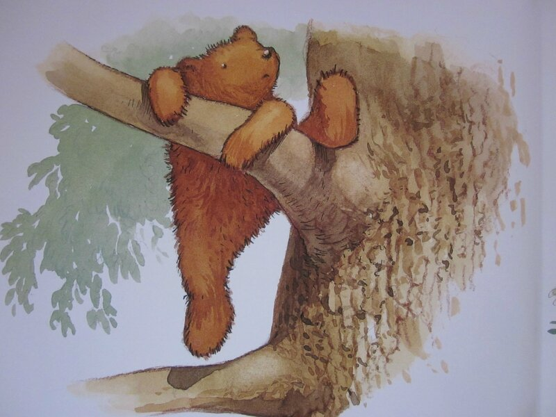 petit ours2
