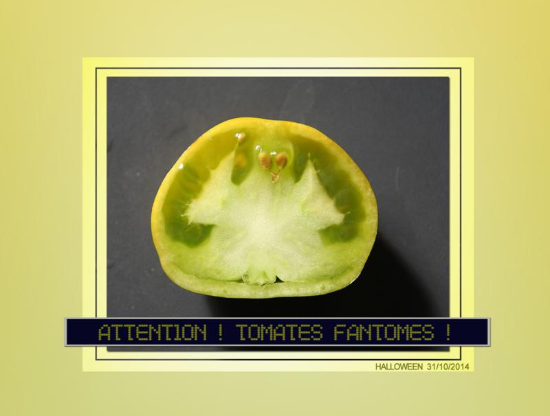 tomate-fantome_1