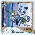 30_Sandrinette_bleu comme l'amour