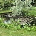 Bassin de Santonine