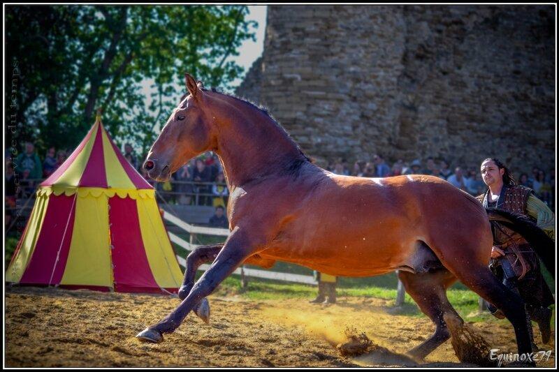 Fête médiévale du Château de Talmont (Vendée) equinoxe79 (28)