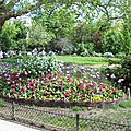 fleurs_squarebatignolles